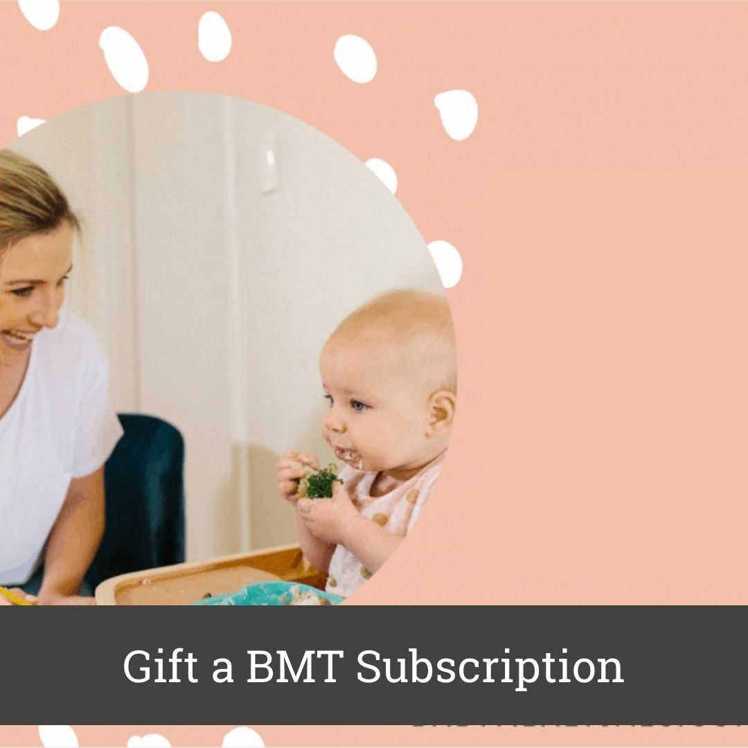 gift-a-baby-mealtimes-subscription
